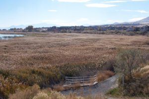 Another Utah Lake Shoreline Restoration Project To Begin Soon
