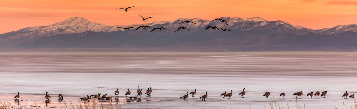 2016 Utah Lake Photography Contest